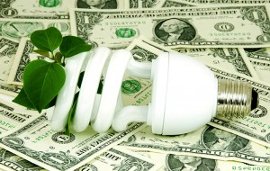 Saving energy bulb and money